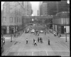 Life in Miniature (moiht) Tags: downtown large minneapolis shift pedestrian 4x5 format crosswalk tilt mn
