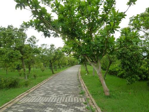 taichung-metropolitan-park-33