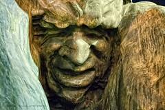 Zulo (Cani Mancebo) Tags: españa spain cara murcia cartagena rostro esculpture zulo víctorochoa esultura canimancebo monumentovíctimasterrorismo
