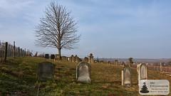 Jüdischer Friedhof bei Flonheim