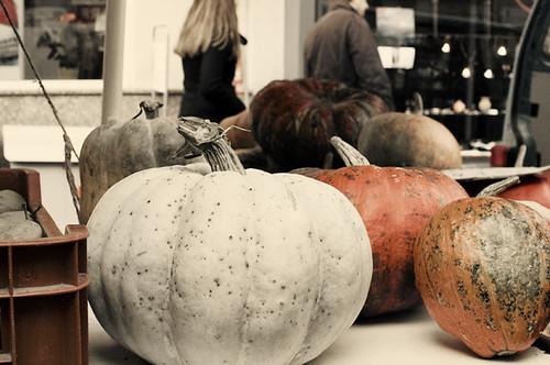 Market - White Pumpkin