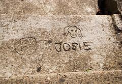 Josie (glennbphoto) Tags: sanfrancisco guesswheresf hint foundinsf sgraffito