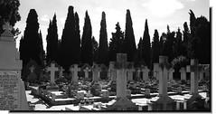 Cementerio de Logroño