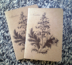 Le Petit Cadeau (scoutbooks) Tags: green ink paper notebook book recycled portlandoregon sustainable recycledpaper chipboard soyink roundedcorners pinballpublishing saddlestitch pocketnotebook scoutbook sustainablestationery powertothepocket