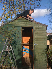 Shed Roof Repair