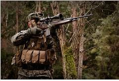 M14 (Starski) Tags: usmc gg marines airsoft m14 dmr 5014 k10d metz48 ggm14veteran