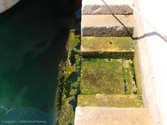 DB_20080621_8546 (ilg-ul) Tags: harbour croatia malilošinj lošinjisland