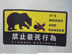 Funny Sign - Don't play dead. 2009-11-13 0345 Taiwan Taipei (Badger 23) Tags: bear baby sign roc funny taiwan lustig taipei formosa  sein 2009 engraado  signe divertente zeichen  drle grappig signo znak playdead jezevec  republicofchina bc  taibei enklas    tegn    merkki  mrk 20091113  tchajwan           badger23   thivn  tapeh taivna  tavan    thipets   taip tchajpej