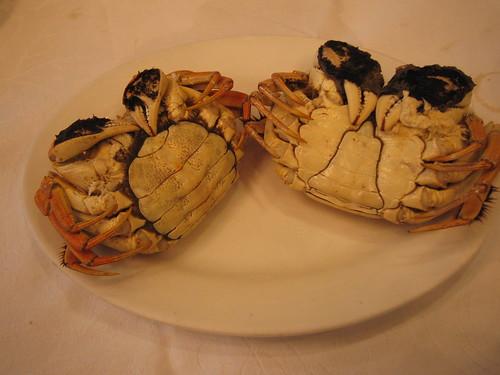 Shanghai hairy crab(上海蟹)