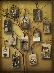 Reflection (anji one) Tags: old family tree youth sisters vintage dad uncle memories mum nephew remembering