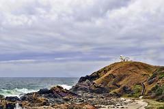 Tacking Point Lighthouse (rsusanto) Tags: lighthouse australia portmacquarie tackingpoint