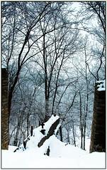 +  + (DigitalObserver.) Tags: minnesota rochester mn 2010 quarryhill rochestermn winterscene  winter2010 digitalobserver