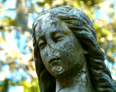 Perpetual (birdrman) Tags: statue angel charleston magnoliacemetery colorphotoaward fz18
