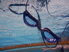 Goggly (Harvey Schiller - chateauglenunga) Tags: pink blue sky man pool clouds swim lumix freestyle underwater goggles stroke flags lane ropes float mega unley pennants dmcft1