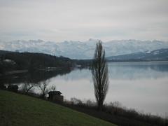 Hallwilersee am Alpenkamm