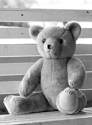 Ted E Bear b&w