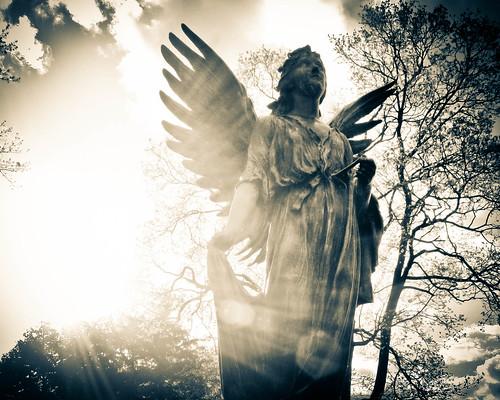 フリー写真素材, 芸術・アート, 彫刻・彫像, 天使, アメリカ合衆国,