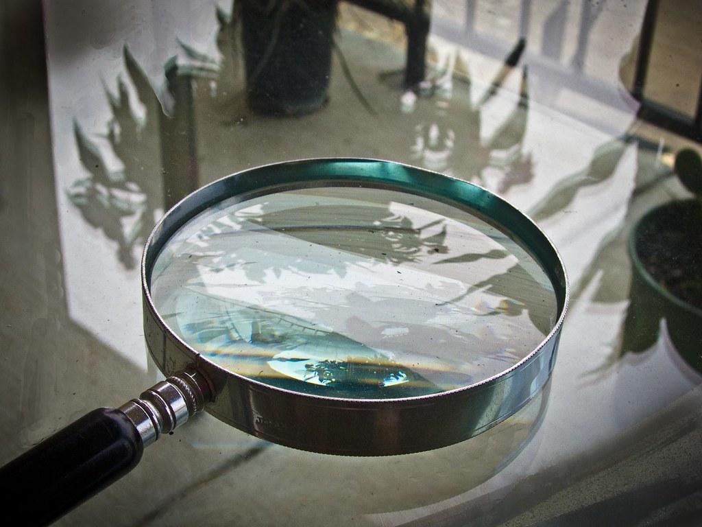 Magnifier.1