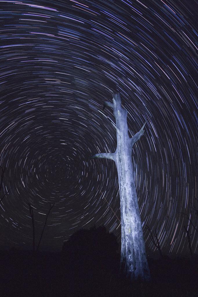 Star Trail @ Ballow View