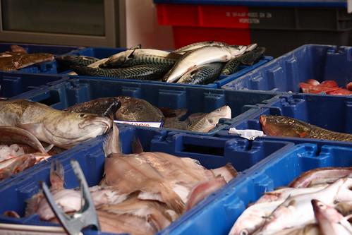 Fish Market. Assen.