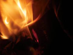 llama2 (LaMasFea) Tags: fuego chimenea arder