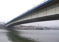 over the bridge (gatalinkica) Tags: bridge november river ducks belgrade beograd sava mistyday brankovmost