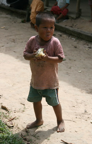 Indian boy (Jagua tribe) eating guanabana - Annona muricata (Annonaceae)