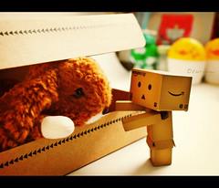 hey!! that's my box!! (TURBOW) Tags: bunny toy doll geek box mini dashboard yotsuba danbo amazoncojp revoltech  pungtou
