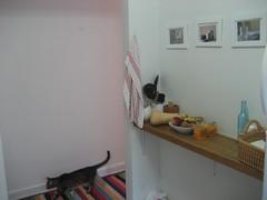 IMG_4271 (flaschenpostpics) Tags: nyc myfirstapartment manhattanapartment apartmenttherapyny uppereastsidestudio