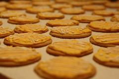 Plate Cookies (unionicola) Tags: christmas xmas cookies plate sugar biology bacteria microbiology petri agar
