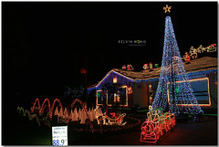 Adelaide Christmas Lights (Kelvin Wong (Away)) Tags: christmas xmas light holiday cute beauty festival canon wonderful season happy star amazing dof superb joy balls australia christmastree depthoffield stunning excellent adelaide joyful southaustralia greeting seasonsgreetings christmaslight interestiness canoneos400d canoneosrebelxti decoraction canoneoskissx kelvinwong piscesromance