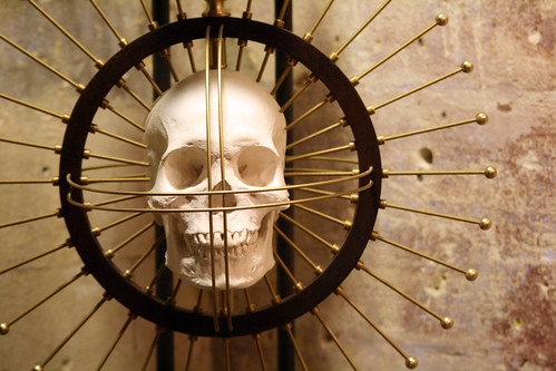 skull with metal rods