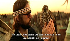 Cages (froussecarton) Tags: film still subtitles theroyaltenenbaums lukewilson richietenenbaum