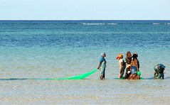 like a long green veil (daniel virella) Tags: ocean sea beach water work tanzania fishing women colours indianocean zanzibar indic goldenratio rasnungwi