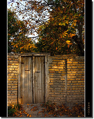 Sunset colors (seyed mostafa zamani) Tags: life park lighting camera new autumn light sunset red color colour macro tree brick green art fall love nature colors beautiful beauty look yellow wall night photoshop canon landscape photography eos death wooden leaf nice colorful asia iran arts dreams classical iranian dear sec 2009  islamic  lovly              azarbayjan   eos450d  450d   marand    natvryalyst