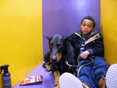 Boy with Doberman (Ingrid!) Tags: dog dogshow westminsterkennelclub wkc blankstares