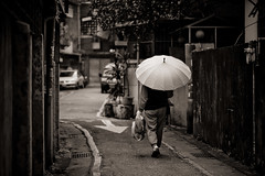The way home (Penelope's Loom) Tags: home umbrella alley nikon taiwan grandparents taipei arrow 105mm yonghe explored d700 thisisnotmygrandmotherinthephoto