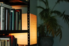 2010:03:02__19:58:46 (MilkaWay) Tags: georgia books bookshelf athens athome day61 2010 clarkecounty therussians orgellamp