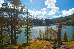 Vista of Ellery Lake - Yosemite California (Darvin Atkeson) Tags: california tioga lake yosemite national park high sierra nevada mountian range alpine nature natual scenic forest white pine volcanic vista eastern elevation darv darvin atkeson liquidmoonlightcom bej ellery usa us america