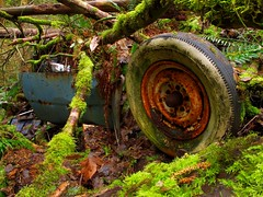 End of the trail (gordeau) Tags: trees cars abandoned moss bc buried britishcolumbia delta vehicles gordon carparts wrecked ashby cougarcanyon flickrchallengegroup flickrchallengewinner partlyburied cougarcanyonpark disposedcars gordeau