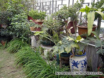 Well-kept greenery