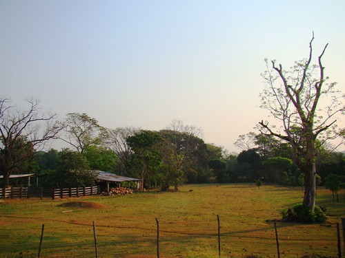 Tramo Tapachula-Huehuetán (58)