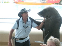 IMG_2327 (Arbo 2010) Tags: coffsharbour sealkisses
