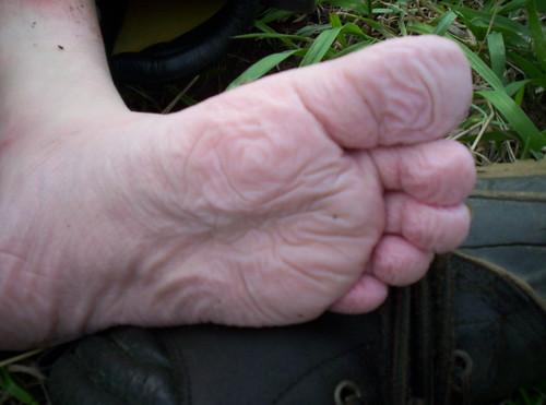 medium's foot