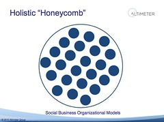"Holistic ""Honeycomb"""