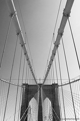 Brklyn Bridge (Leazwen) Tags: old newyorkcity bw usa newyork lines brooklyn idea vanishingpoint manhattan symmetry brooklynbridge sw ropes symetrie linien seile leinen fluchtpunkt nikond60 brklynbridge