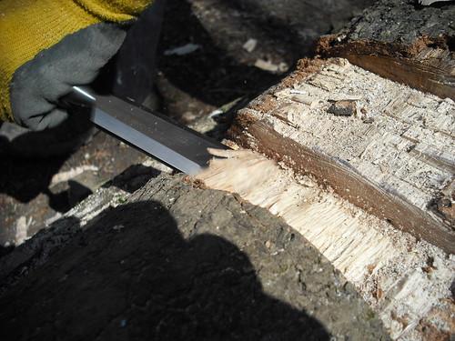 Wood chisel.