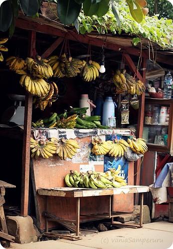 Pisang... pisang...