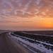 Road at Daybreak