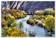A River Among Colors ! (1Ehsan) Tags: autumn orange fall yellow iran esfahan isfahan zayanderood zayandehrood
